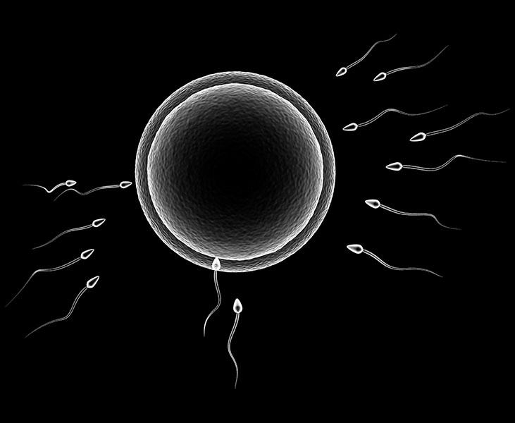 tilbakevendt kreft i fra livmor